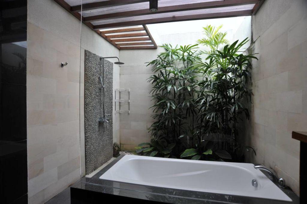 Растения добавят любой ванной свежести и разнообразят интерьер