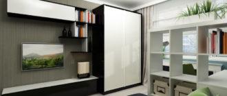Как правильно подобрать в гостиную шкаф в современном стиле (13 фото)