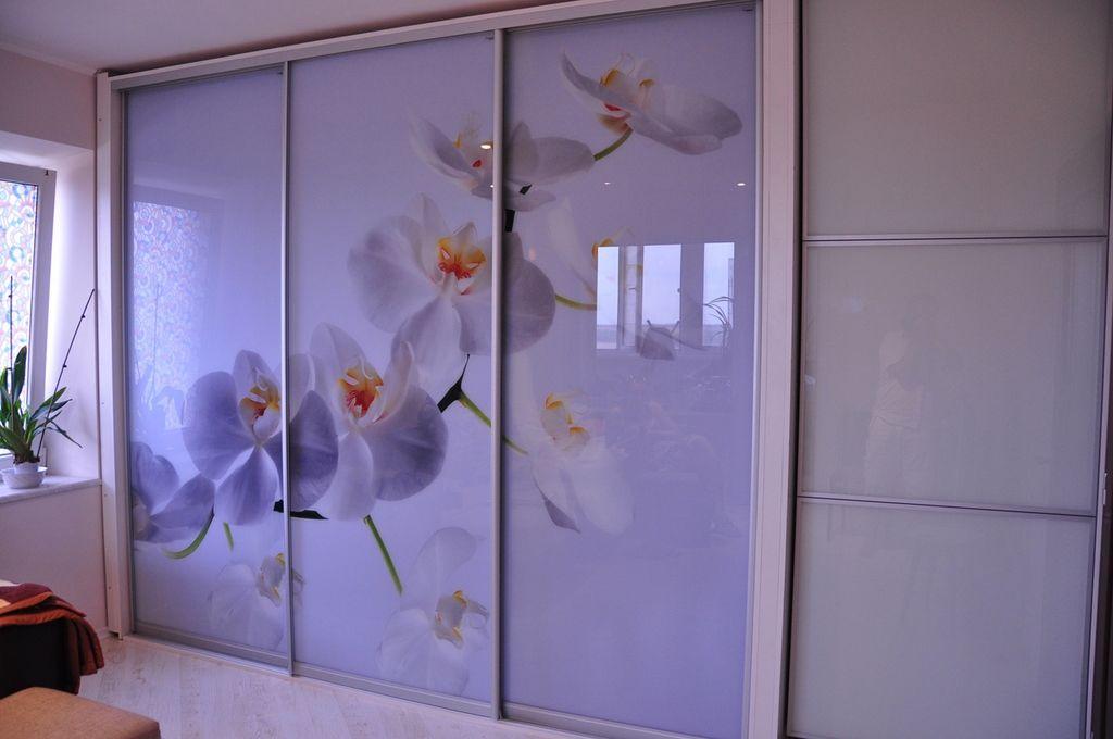 Фотопечать на фасаде шкафа является необычным решением для декора пространства